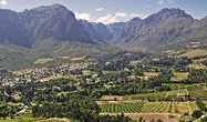 Spier Cape Winelands